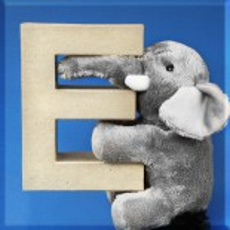ABCebra Magnet E wie ELEFANT - blau