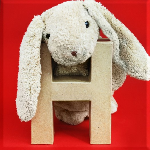 ABCebra Magnet H wie HASE - rot