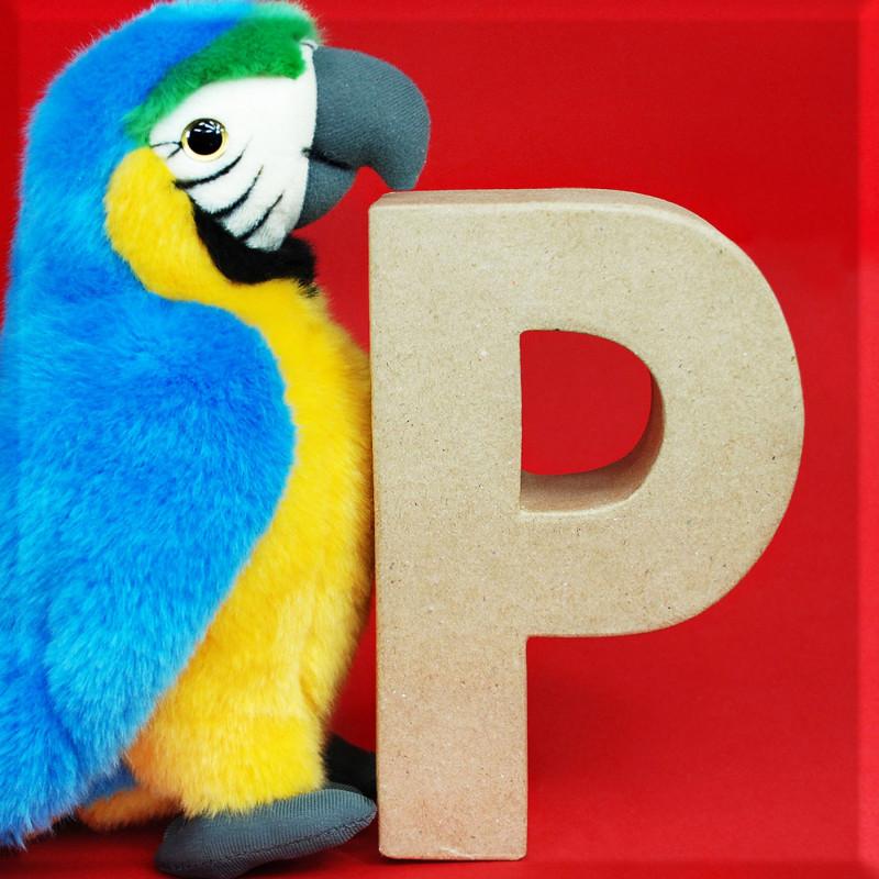 ABCebra Magnet P wie Papagei - rot