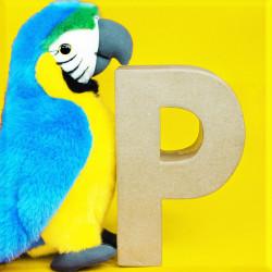ABCebra Magnet P wie Papagei - gelb