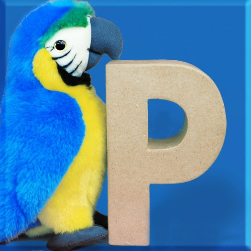 ABCebra Magnet P wie Papagei - blau