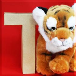 ABCebra Magnet T wie Tiger - rot