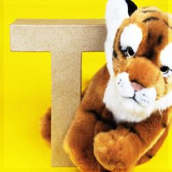 ABCebra Magnet T wie Tiger - gelb