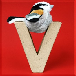 ABCebra Magnet V wie Vogel - rot