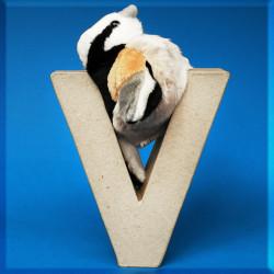ABCebra Magnet V wie Vogel - blau
