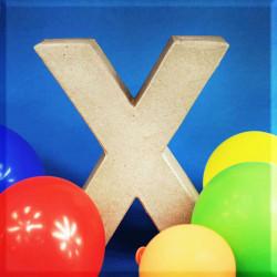 ABCebra Magnet X wie Xaver - blau