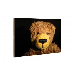 Kleine Freunde - Wooden Block - 10x15 cm - Tolstoi