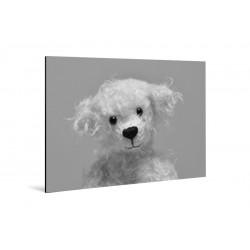 Kleine Freunde - Druck auf Aluminium - 20x30 cm - Johannes