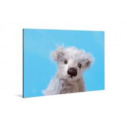 Kleine Freunde - Print on aluminum - 20x30 cm - Theon