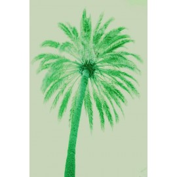 Amelie von Oppen - Druck auf Canvas - 13 Palms - Palm III