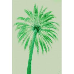 Amelie von Oppen - Print on Canvas - 13 Palms - Palm III