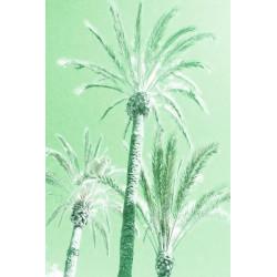 Amelie von Oppen - Print on Canvas - 13 Palms - Palm X