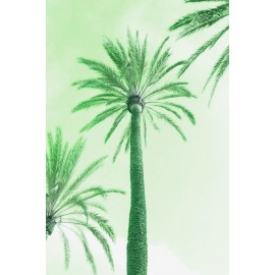 Amelie von Oppen - Druck auf Canvas - 13 Palms - Palm XI