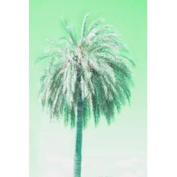 Amelie von Oppen - Print on Canvas - 13 Palms - Palm IX