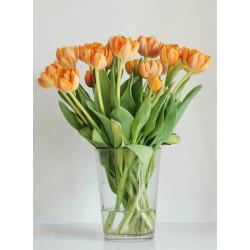 Les Fleurs - Druck auf Canvas - Tulpen