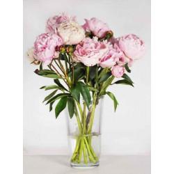Les Fleurs - Druck auf Canvas - Hortensie