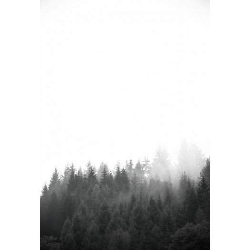 Studio Na.hili - Print on Aludibond - Walk Through The Forest