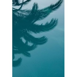 Studio Na.hili - Druck auf Aludibond - Palms in the Pool