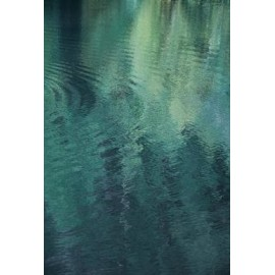 Studio Na.hili - Druck auf Aludibond - Forest In The Lake