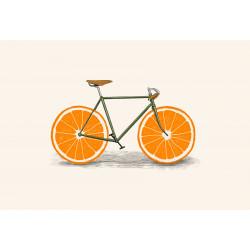 Florent Bodart - Druck auf Aludibond - 15 Orangen