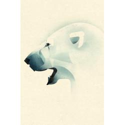 Dieter Braun - Druck auf Aludibond - Eisbär
