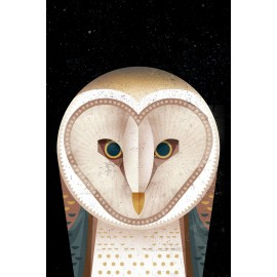 Dieter Braun - Print on Aludibond - 06 Owl