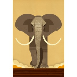 Dieter Braun - Print on Aludibond - 11 Elephant
