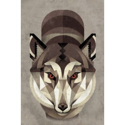 Dieter Braun - Print on Aludibond - 14 Wolf