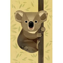 Dieter Braun - Druck auf Aludibond - 12 Koala