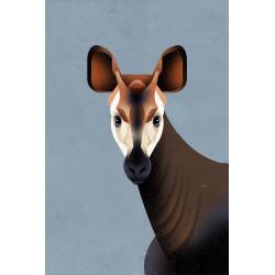Dieter Braun - Druck auf Aludibond - 18 Okapi