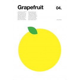 Nick Barclay - Druck auf Aludibond - Fruit Collection - 04 Grapefruit