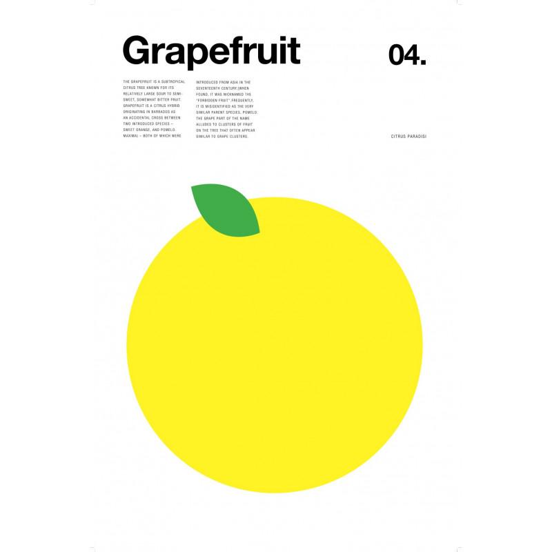Nick Barclay - Print on Aludibond - Fruit Collection - 04 Grapefruit