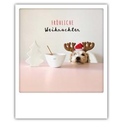 Pickmotion Christmas Cards - Weihnachten Postkarte: Fröhliche Weihnachten - geschmückter Hund