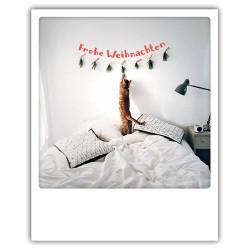 Pickmotion Christmas Cards - Weihnachten Postkarte: Frohe Weihnachten - Katze