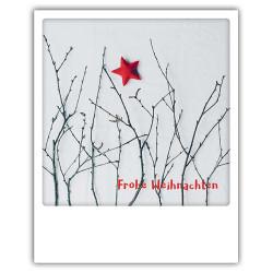 Pickmotion Christmas Cards - Weihnachten Postkarte: Frohe Weihnachten - Zweige und Stern