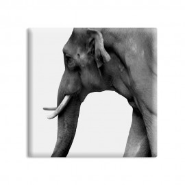 designersgroup - dg-selection Magnet Tiere:  Elefant