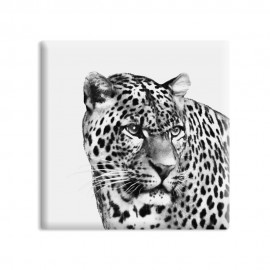 designersgroup - dg-selection Magnet Tiere:  Leopard