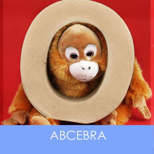 designersgroup präsentiert ABCebra