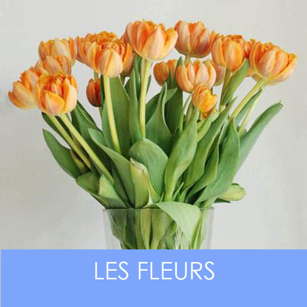 designersgroup presents Les Fleurs
