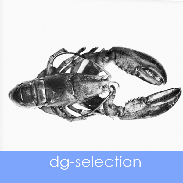 designersgroup presents dg selection